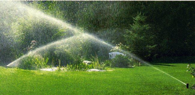 Garden Irrigation Sprinkler Systems Garden Home Cleaning